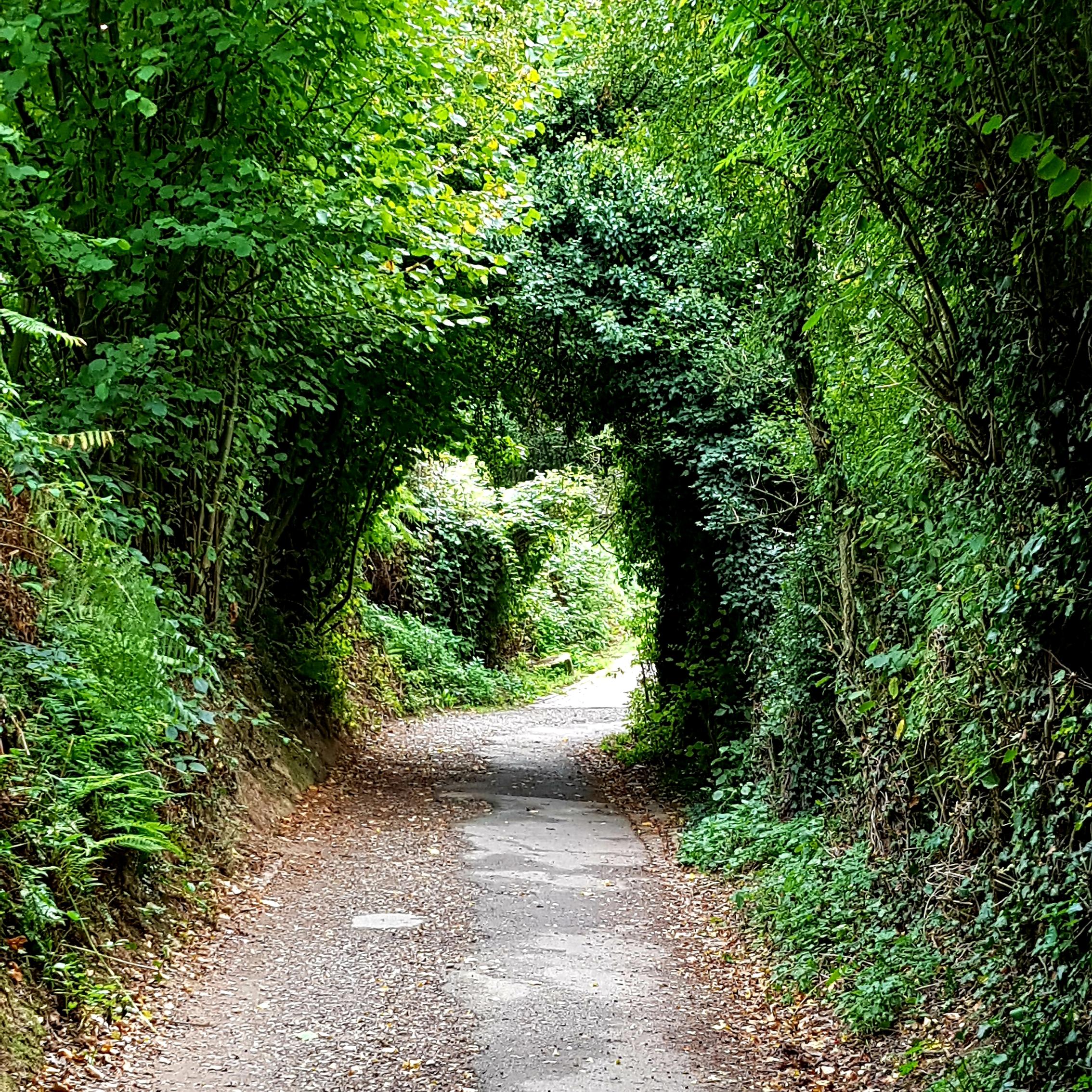 Voll im Tunnel – Laufen im Flow