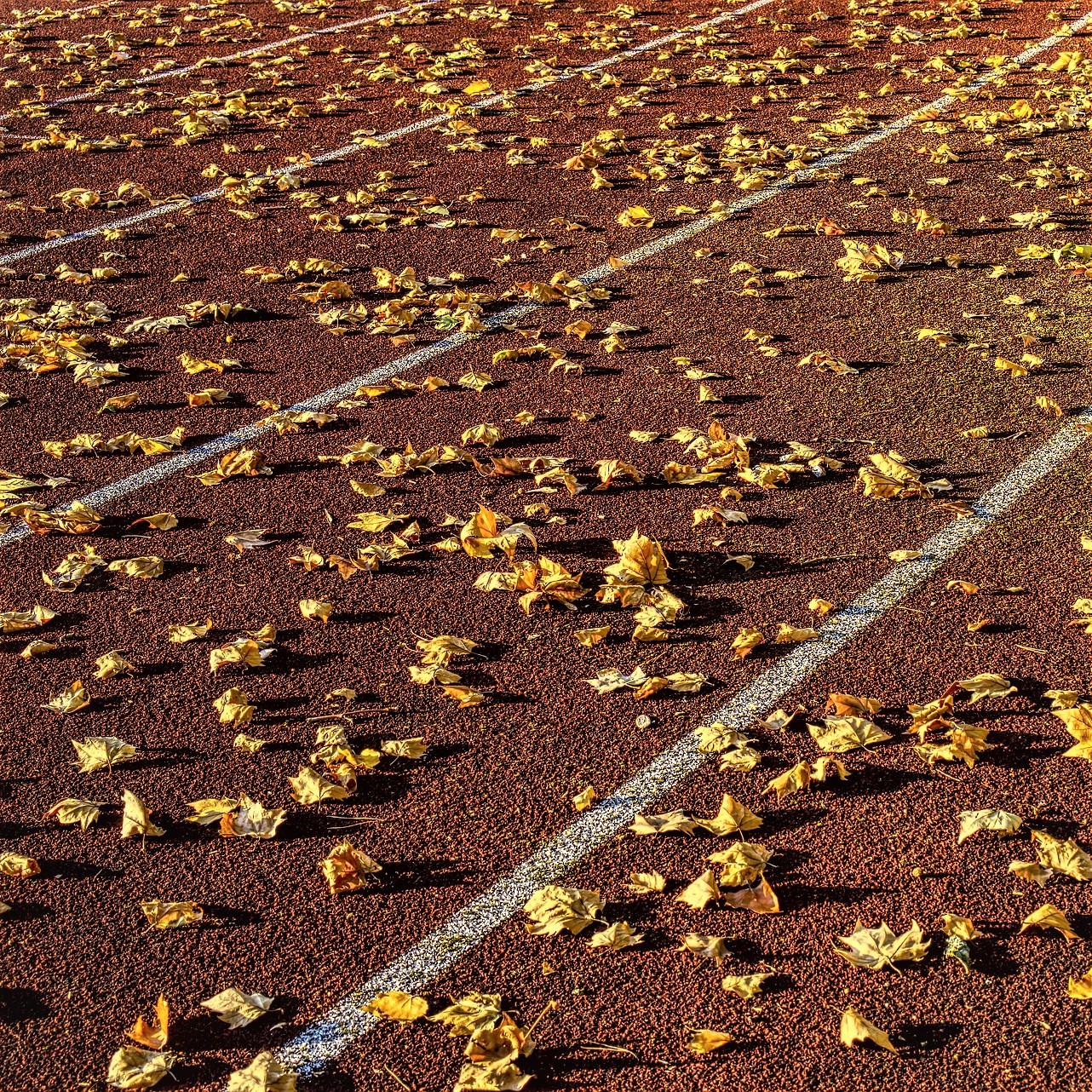 Outdoortraining im Herbst